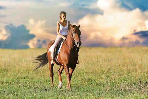 Woman, Horse, Animals, Nature, Foal, Hay, Animal, Mare