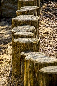Wood Trunks, Post, Limit, Mark, Outline, Framed