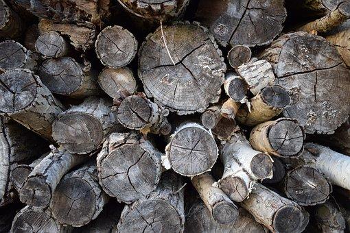 Logs, Wood, Timber, Wooden, Cut, Lumber, Pile, Stack
