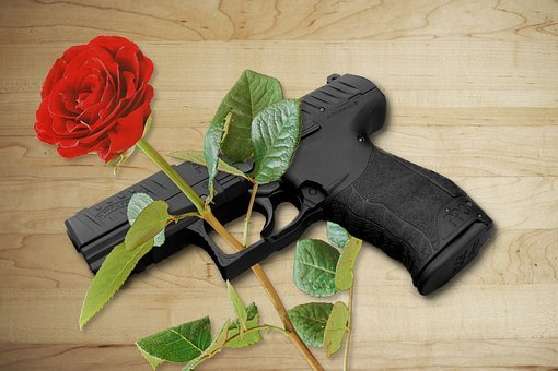 Pistol, Rose, Gun, Weapon, Co2