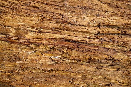 Wood-fibre Boards, Tree, Yellow, Brown, Wood, Billet