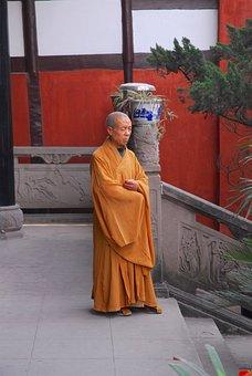 Monk, Buddist, Buddhism, Spiritual, Reflective