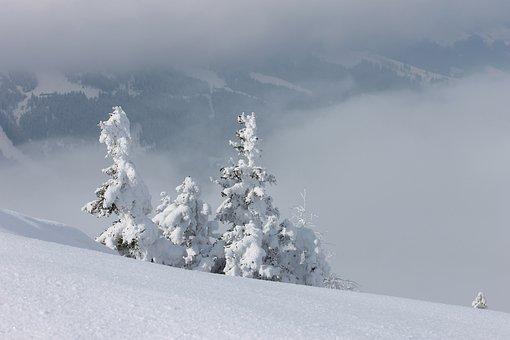 Wintry, Deep Snow