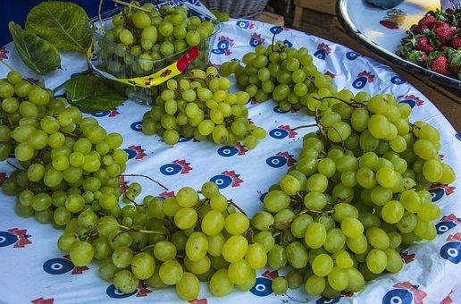 Raisin, Fruit, Fresh, Healthy, Garden, Nature, Sunday