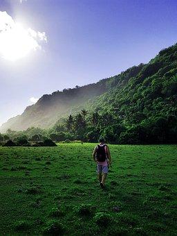 Hiking, Walk, Away, Nature, Human, Leisure, Trail