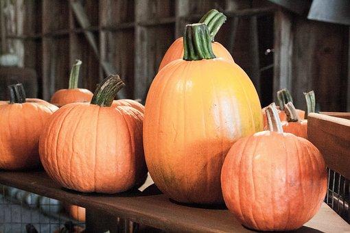 Halloween, Pumpkins, Autumn, Fall, Orange, October