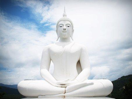 Buddha, India, Mind, Prayer, Concept, Buddhist