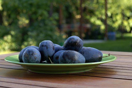 Plums, Fresh, Ripe Fruit, Autumn, Stock, Vineyard