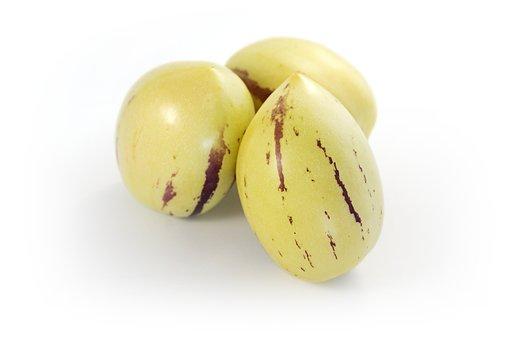 Pepino, Pepinofrüchte, Melon Pear, Solanum Muricatum