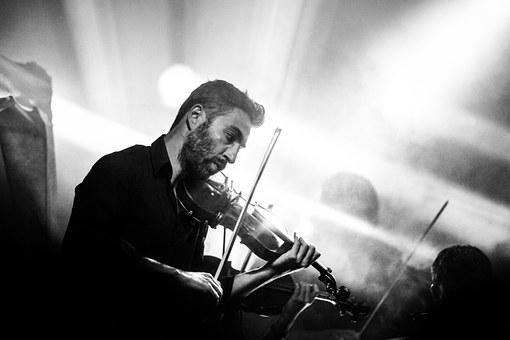 Violinist, Concert, Music, Player, Violin, Orchestra