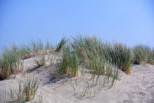 Sea, Lake, Dune, Grass, Sand