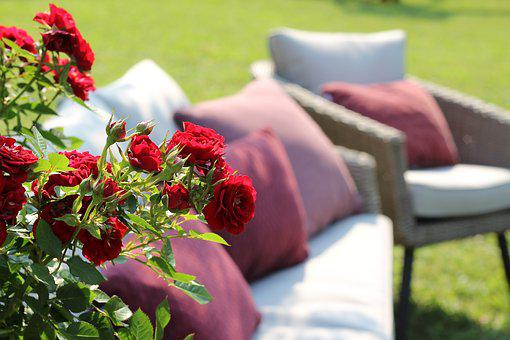 Red Roses, Armchairs, Relaxation, Zagreb Floraart 2018