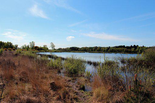 Landscape, Heide, Water, Nature, More, View