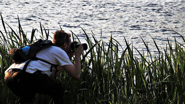 Photographer, Rushes, Beach, Lake, Nature, Water, Lens