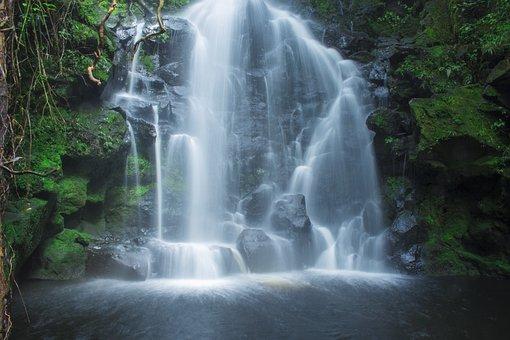 Cataract, Waterfall, Water, Nature, Vegetation, Fall