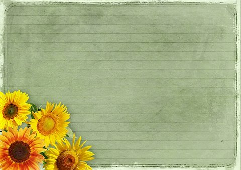 Flowers, Frame, Sunflower, Background Image, Vintage