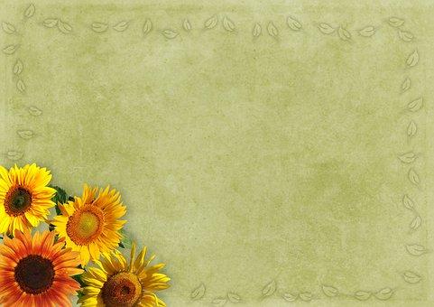 Flowers, Frame, Sunflower, Background Image, Vintage