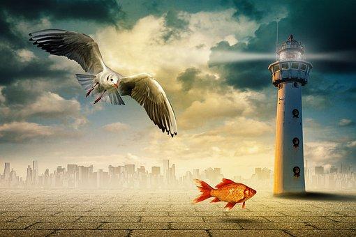 Composing, Surreal, Skyline, Seagull, Fish, Lighthouse