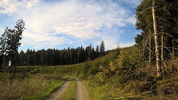 Lane, Trail, Sauerland, Remblinghausen, Meschede