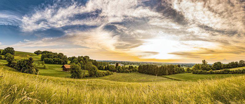 Hut, Meadow, Pasture, Nature, Barn, Field, Field Barn