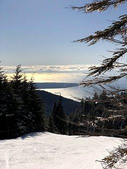 Snow, Sunset, Nature, Cypress, Cypress Mountain, Tree