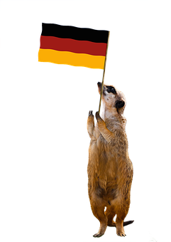 Flag, Germany, Meerkat, Exemption, Isolated, Cut Out