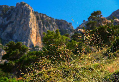 Landscape, Nature, Rock, Grass, Blades Of Grass, Warm