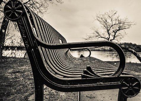 Rain, Bench, Metal, Scenic, River, Trees, Outdoor