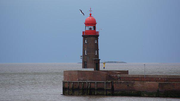 Lighthouse, Seagull, Bird, North Sea, Sky, Blue, Red