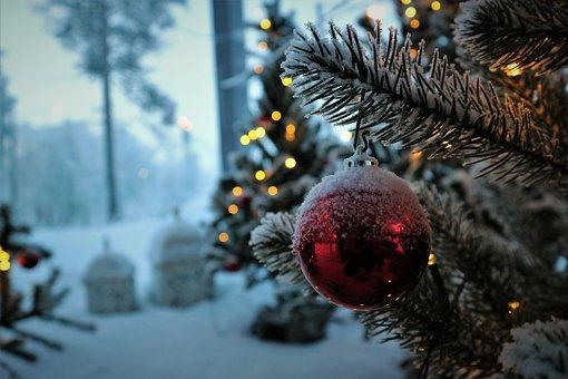 Christmas, Decoration, Holiday, Winter, Snow, Tree