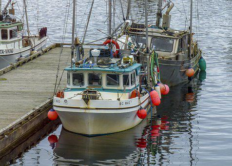 Fishing Boat, Ocean, Pacific, Water, Pier, Sea