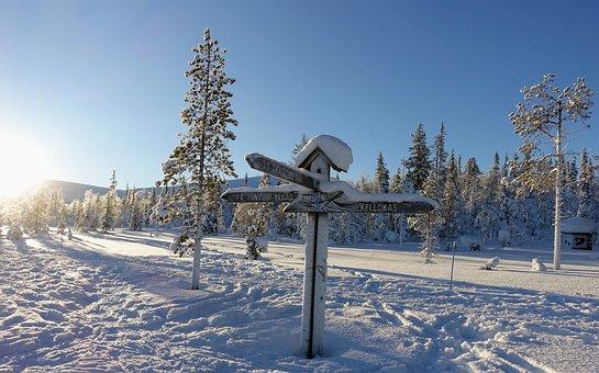 Landscape, Snow, Winter, Sun, Frost, Nature, Finnish