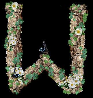 Alphabet, Letter, W, Rustic, Timber, Bark