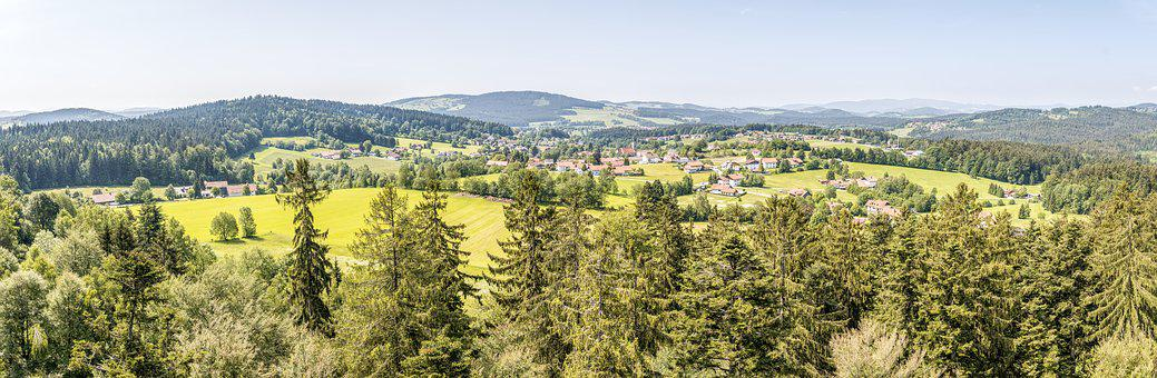 Neuschönau, Bavarian Forest, View, Forest, Nature
