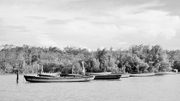 Boats, Brazil, Beach, Mangue, Mar, Tide, Afternoon