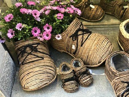 Shoe, Flower, Garden
