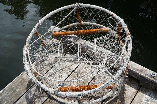 Crab, Pot, Fishing, Sea, Industry, Netting, Rope, Trap