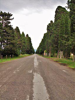 Italy, Tuscany, Cypress, Mediterranean, Avenue, Clouds