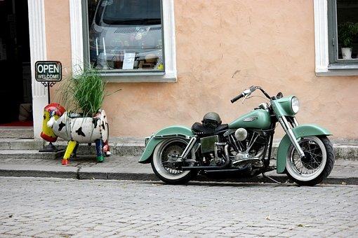 Motorcycle, Green, Cow, Metal, Shop, Grass, Sore, Open