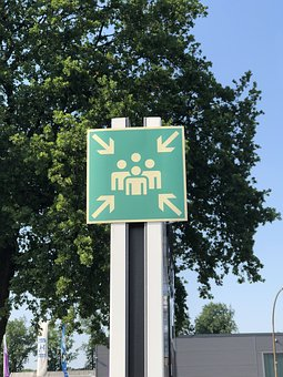 Assembly Point, Meeting Point, Shield, Tree, Road