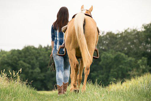 Ride, Horse, Western, Animal, Meadow, Together, Tail