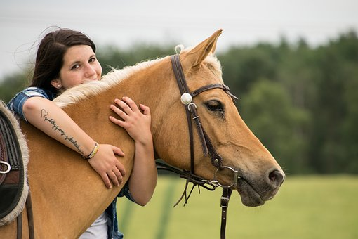 Horse, Animal, Friendship, Human, Arabs, Palomino, Mare