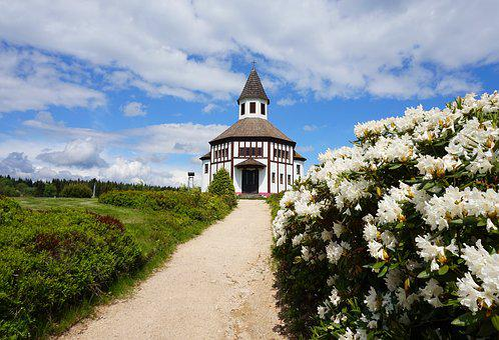 Chapel, Czechia, Fields, Flowers, Meadow, Church