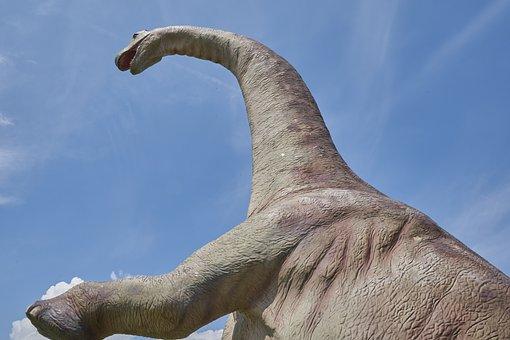 Dinosaur, Extinct, Prehistoric Times, Replica, Dino