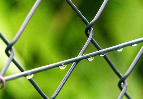 Fence, Drop Of Water, Wire, Close, Macro