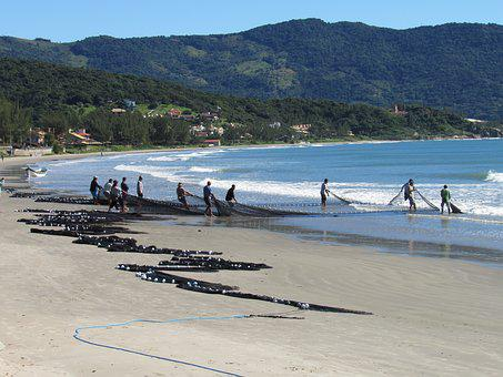 Fishing, Fishnet, Water, Beach, Brazil, Fishermen