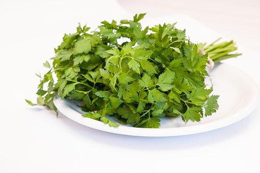 Parsley, Healthy, Green, Food, Culinary Herbs, Vitamins
