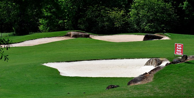 Sand Trap, Golf, Greens, Lawn, Sport, Golfing, Leisure