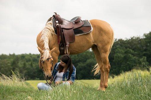 Arabs, Horse, Human, Palomino, Trust, Love, Western