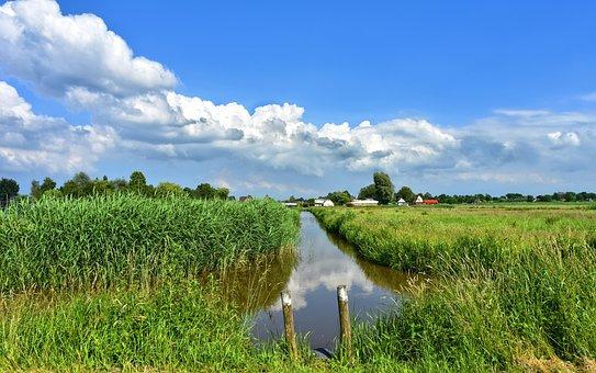 Dutch Landscape, Landscape, Scenic, Holland, Polder